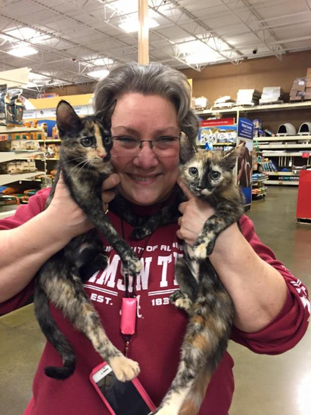 2015-evy-and-ivy-adoption-day-1115